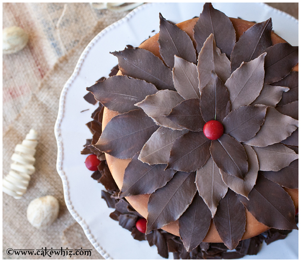 how to make chocolate leaves 4