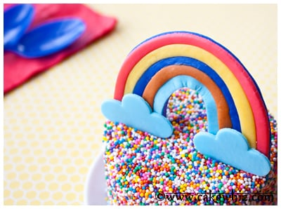 rainbow and sprinkle cake 14