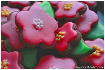 spring cookies 11