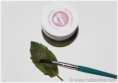 how to make leaf print for a cake 1
