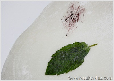 how to make leaf print for a cake 2