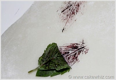how to make leaf print for a cake 3