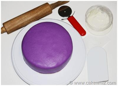 peacock cake 25
