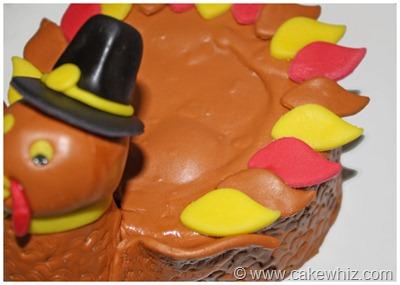 turkey cake 13
