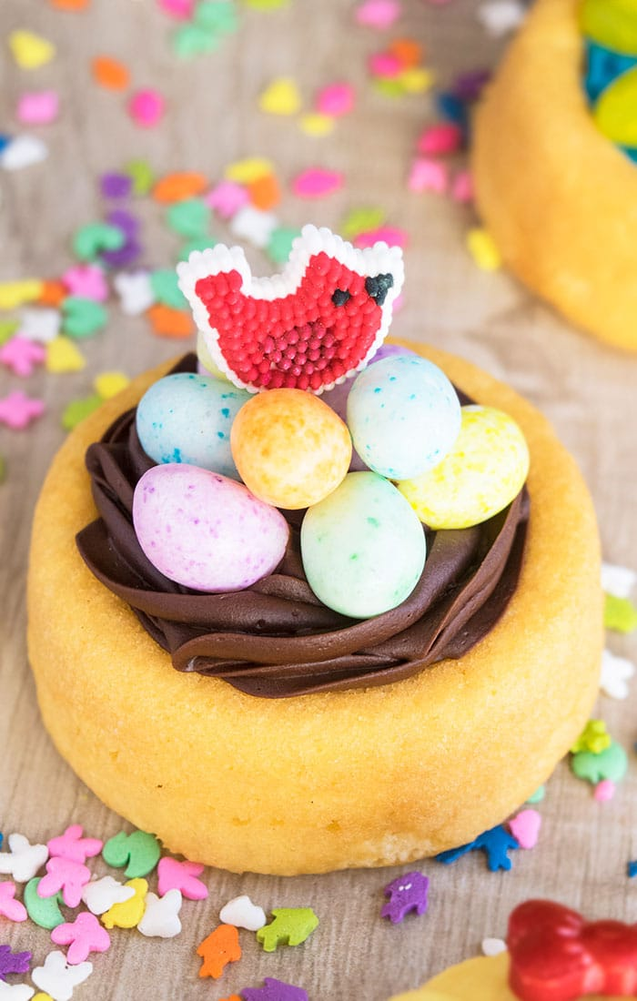 Mini Easter Nest Cake on Rustic Wood Background