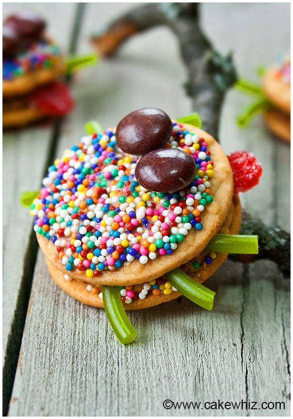 easy hallowween spider cookies 5