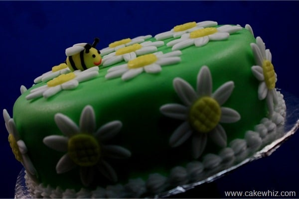Cake with fondant daisies and a bumble bee