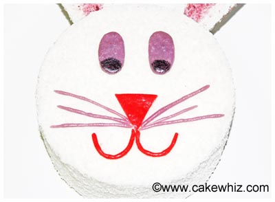 easter bunny cake 19