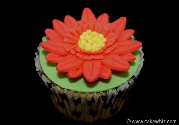 how to make gerbera daisy cupcakes