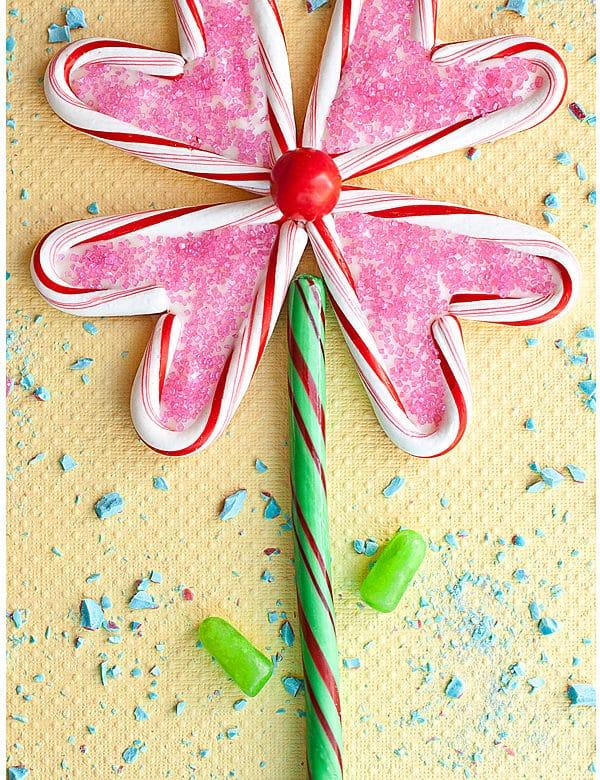 edible flower puzzle