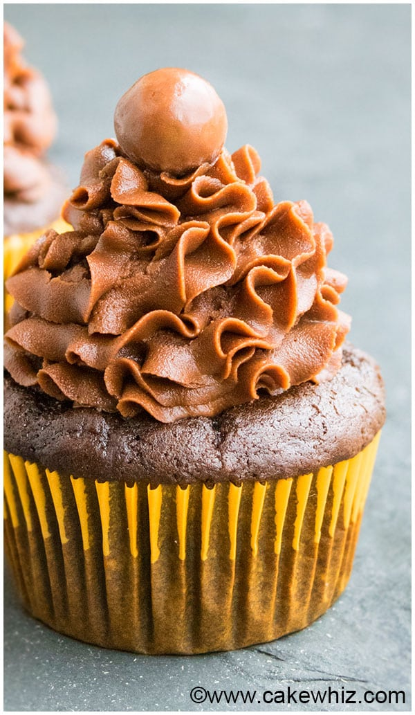 Vegan Chocolate Cupcakes With Chocolate Frosting on Gray Background