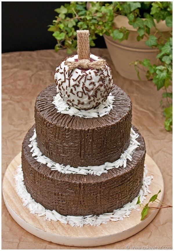 Chocolate Trees Cake Decoration : Fall Themed Chocolate Tree Cake