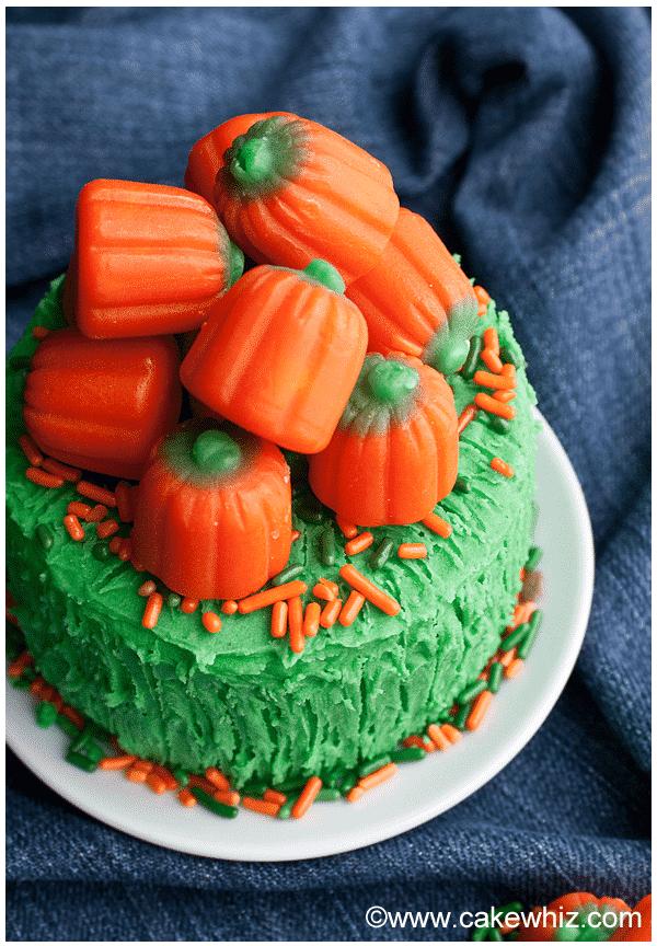 easy pumpkin cake with pumpkin candies 1