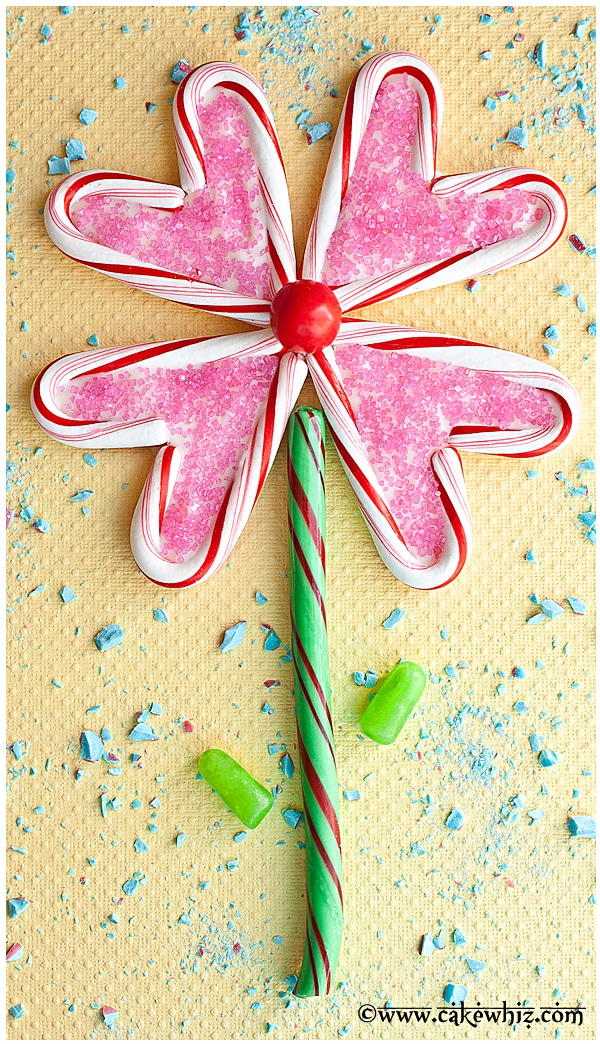 Candied Plant Stems For Cake Decoration Crossword Clue : Candy Cane Sled Cupcakes