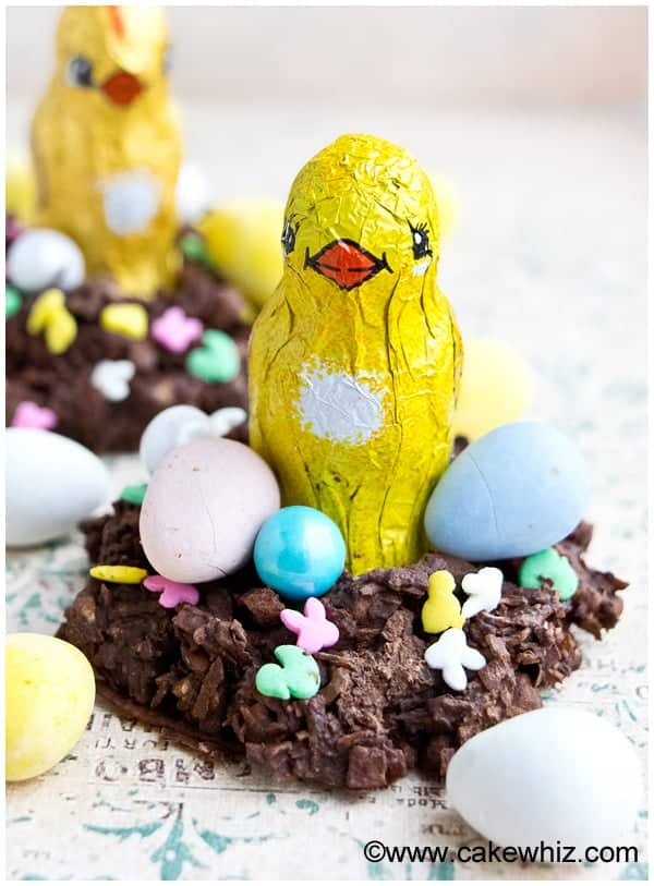 chocolate coconut easter bird nests 2