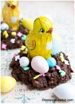 chocolate coconut easter bird nests 4