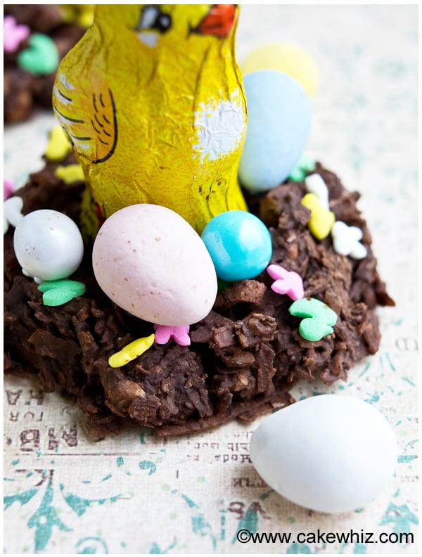 chocolate coconut easter bird nests 7
