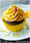 best chocolate cake and cupcakes 16