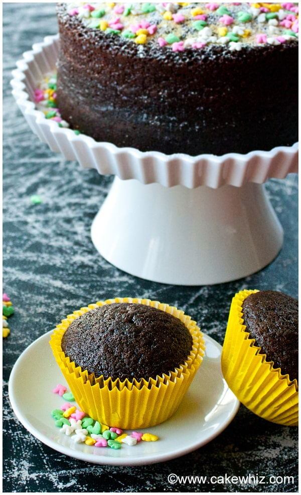 best chocolate cake and cupcakes 7