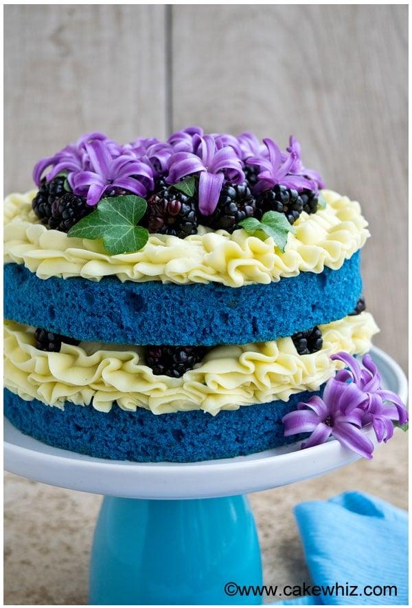 Easy Naked Cake Tutorial Blue Velvet Cake - Cakewhiz-6075