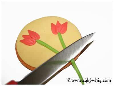 tulip cookies 11