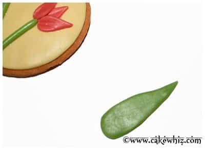 tulip cookies 9