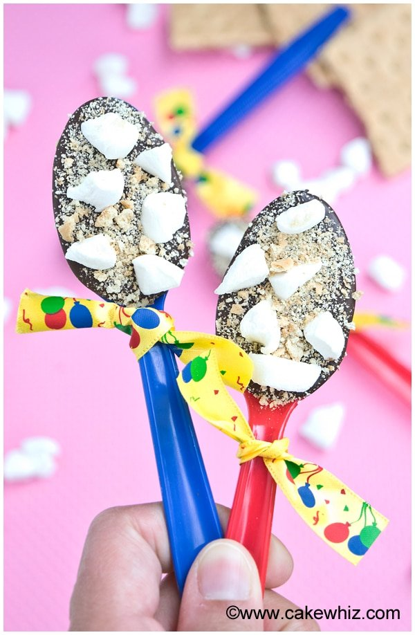 s'mores party spoons 2
