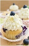 blueberry lime cupcakes 10