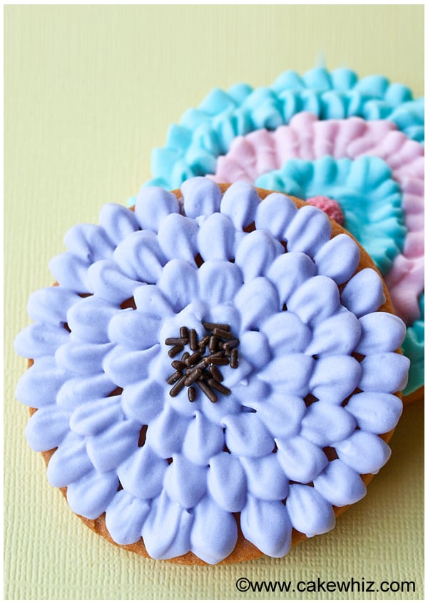 chrysanthemum cookies 03