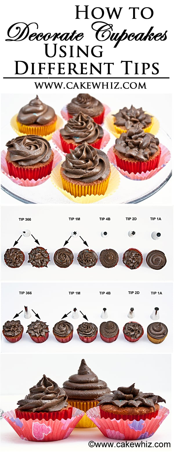how to decorate cupcakes using different wilton tips