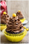 mocha cupcakes with mocha frosting 1