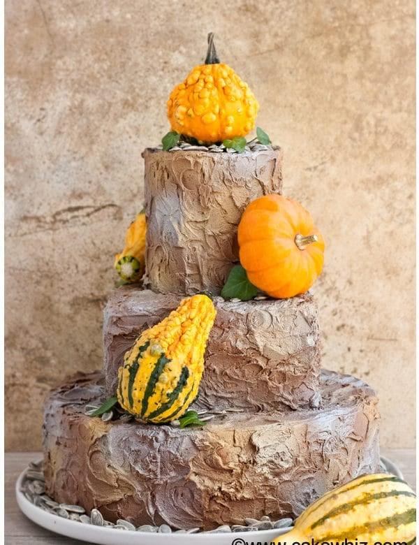 rustic tiered fall cake 1