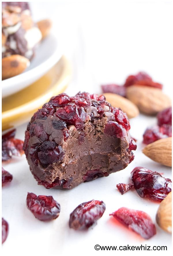 chocolate cranberry truffles 1
