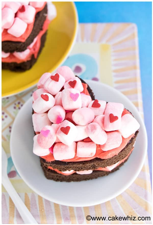 mini heart shaped chocolate marshmallow cake 1