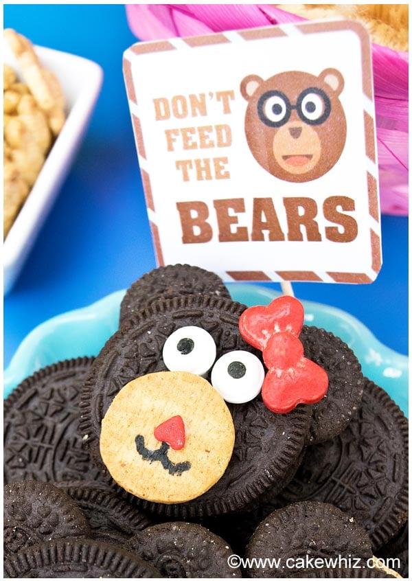 teddy bear party 16