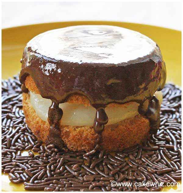 mini boston cream pie