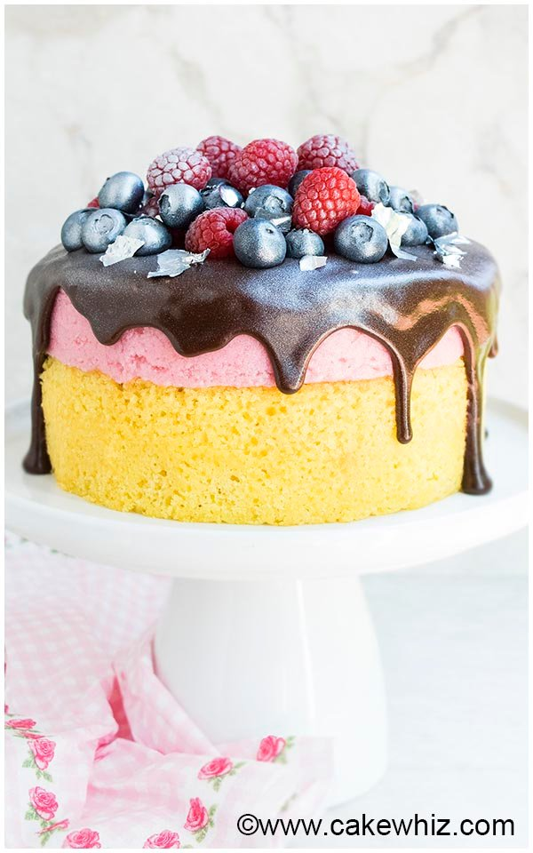 raspberry mousse cake 9