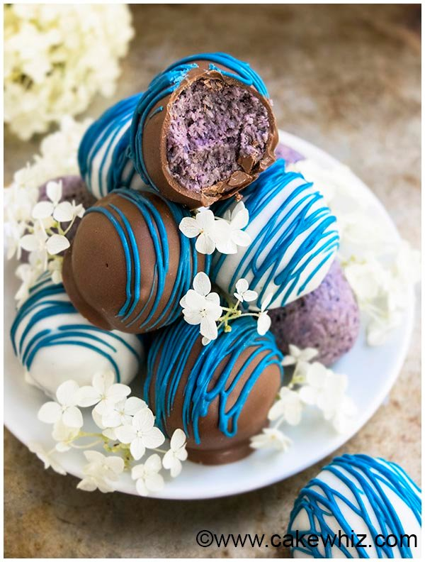 healthy chocolate blueberry truffles recipe 8