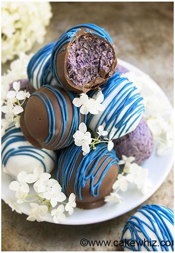 healthy chocolate blueberry truffles recipe