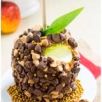 Easy Chocolate Caramel Apples Recipe