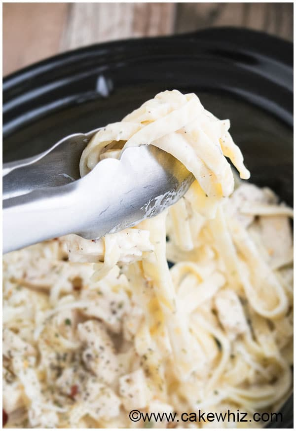 Slow Cooker Easy Chicken Alfredo Recipe 6