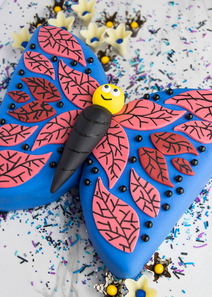 Easy Fondant Decorated Butterfly Cake on White Background with Sprinkles- Angled Shot