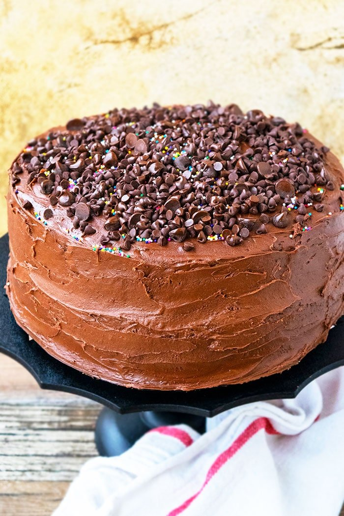 Easy Homemade Chocolate Cake With Chocolate Frosting and Chocolate Chips Decoration
