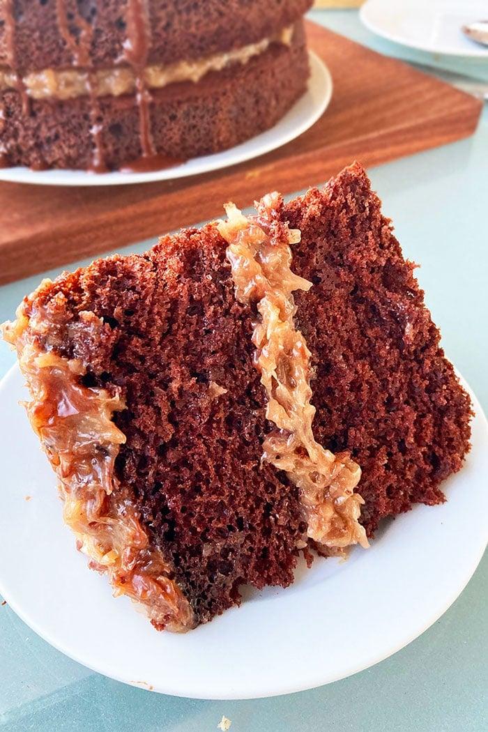 Slice of Chocolate Coconut Pecan Cake With Chocolate Ganache on White Plate
