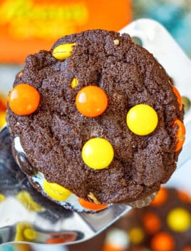 Closeup Shot of Easy Soft and Chewy Reeses Cookies With Cake Mix on Large Spatula